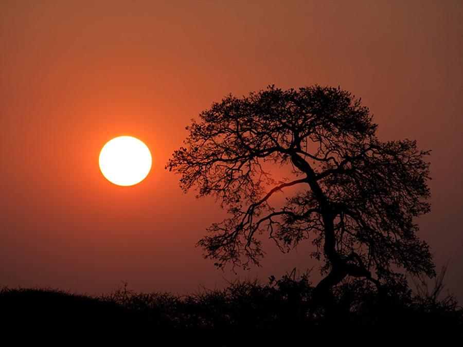 afrika-zonsondergang