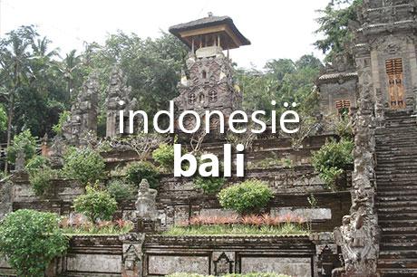 Op vakantie naar Bali