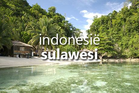 Reis samenstellen naar Indonesië, met bezoek aan Sulawesi